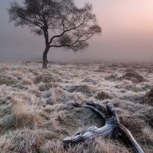 Frost on Hathersage Moor, Derbyshire Peak District - 35pts