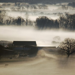Arun Valley - Martin Offer, West Sussex – Editor's Choice 19/11/11