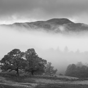 Mountain And Tree Mist At Rydal