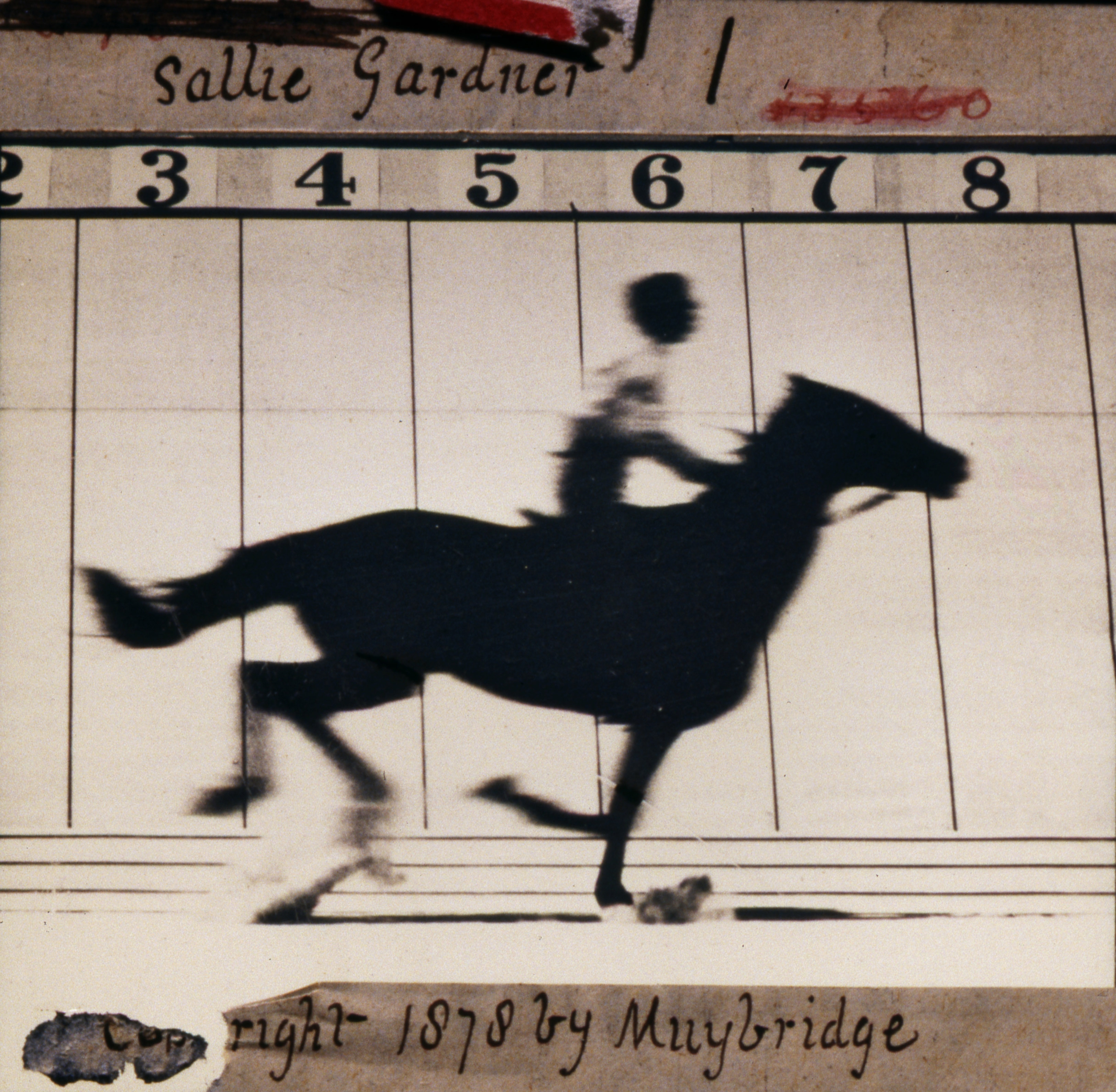 19. Today's gift is 2-4-1 on TATE Britain Muybridge exhibition tickets
