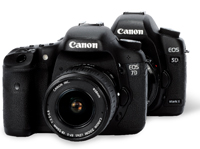 Canon EOS 7D vs Canon EOS 5D Mark II (APS-C vs full frames)
