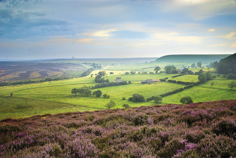Masterclass with Tom Mackie – Landscape, North Yorkshire