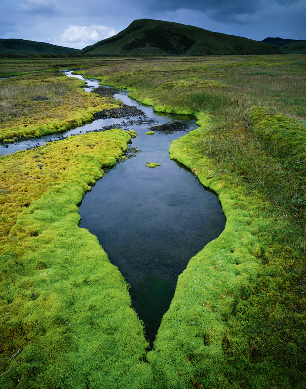 Photo Insight with David Ward – Oasis in Iceland