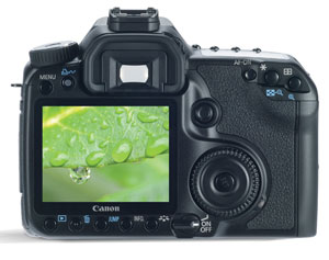 Step by step guide to photographing raindrops