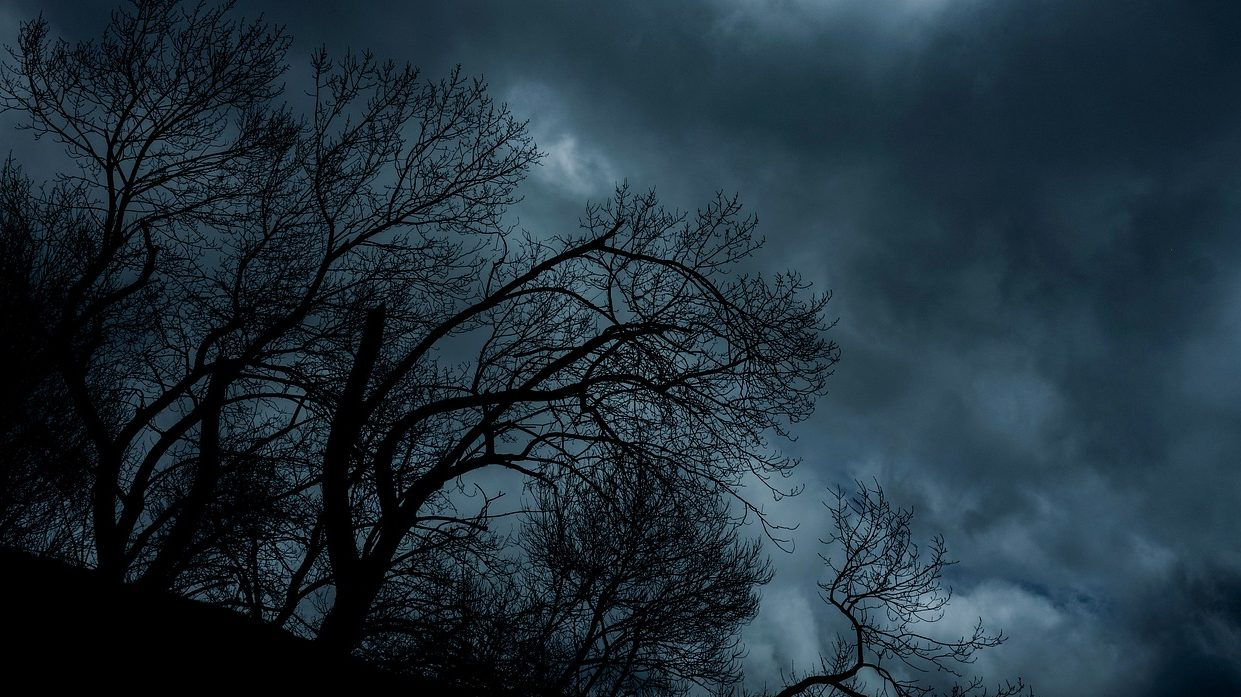 Spooky shots: Step-by-step guide to night landscape photography