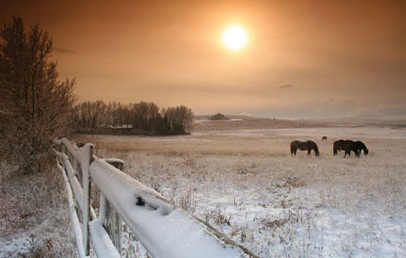 Winter Photography Projects