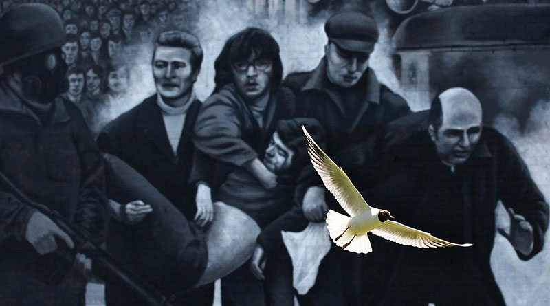 Photo Insight with Cathal McNaughton – Gull Flying Past Mural