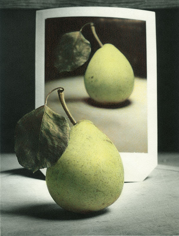 Photo Insight with Andrew Sanderson – Pear and Polaroid