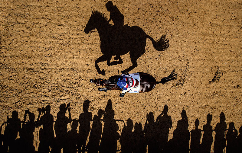 Photo Insight with Adrian Dennis – Horse shadow