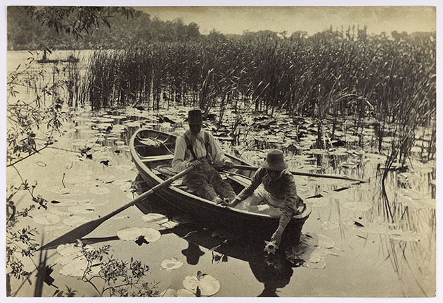 Gathering Water Lilies by Peter Harry Emerson, 1886, platinum print.web
