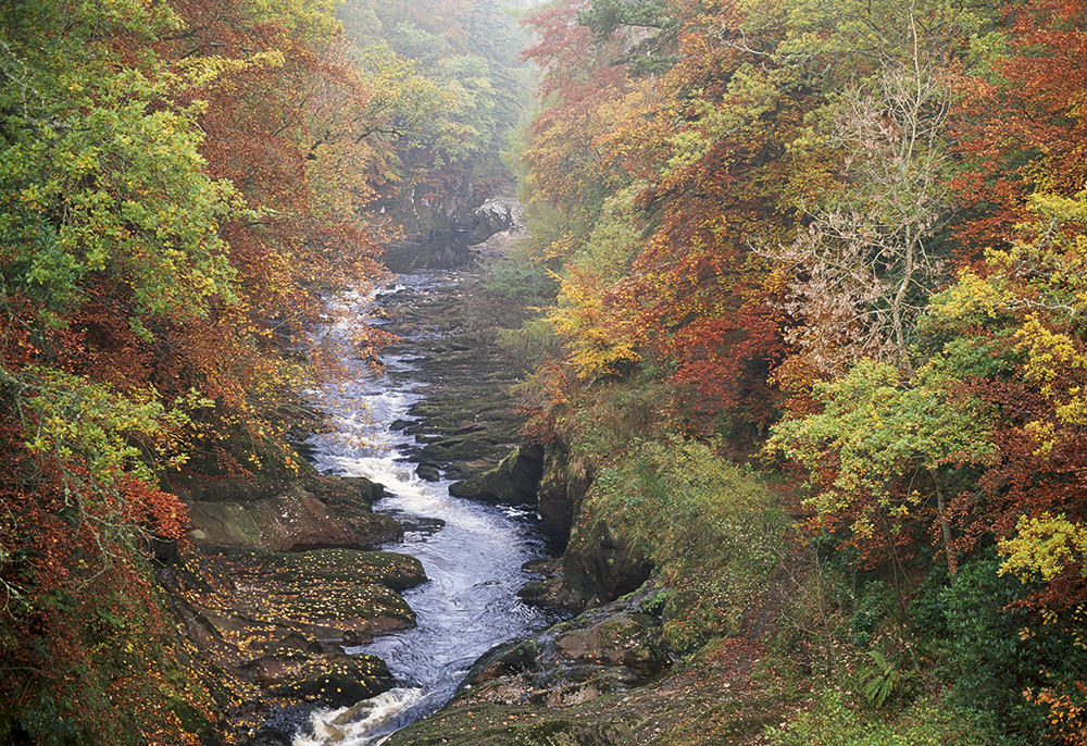 How to photograph Gannochy Gorge in Angus, Scotland: top tips and best locations