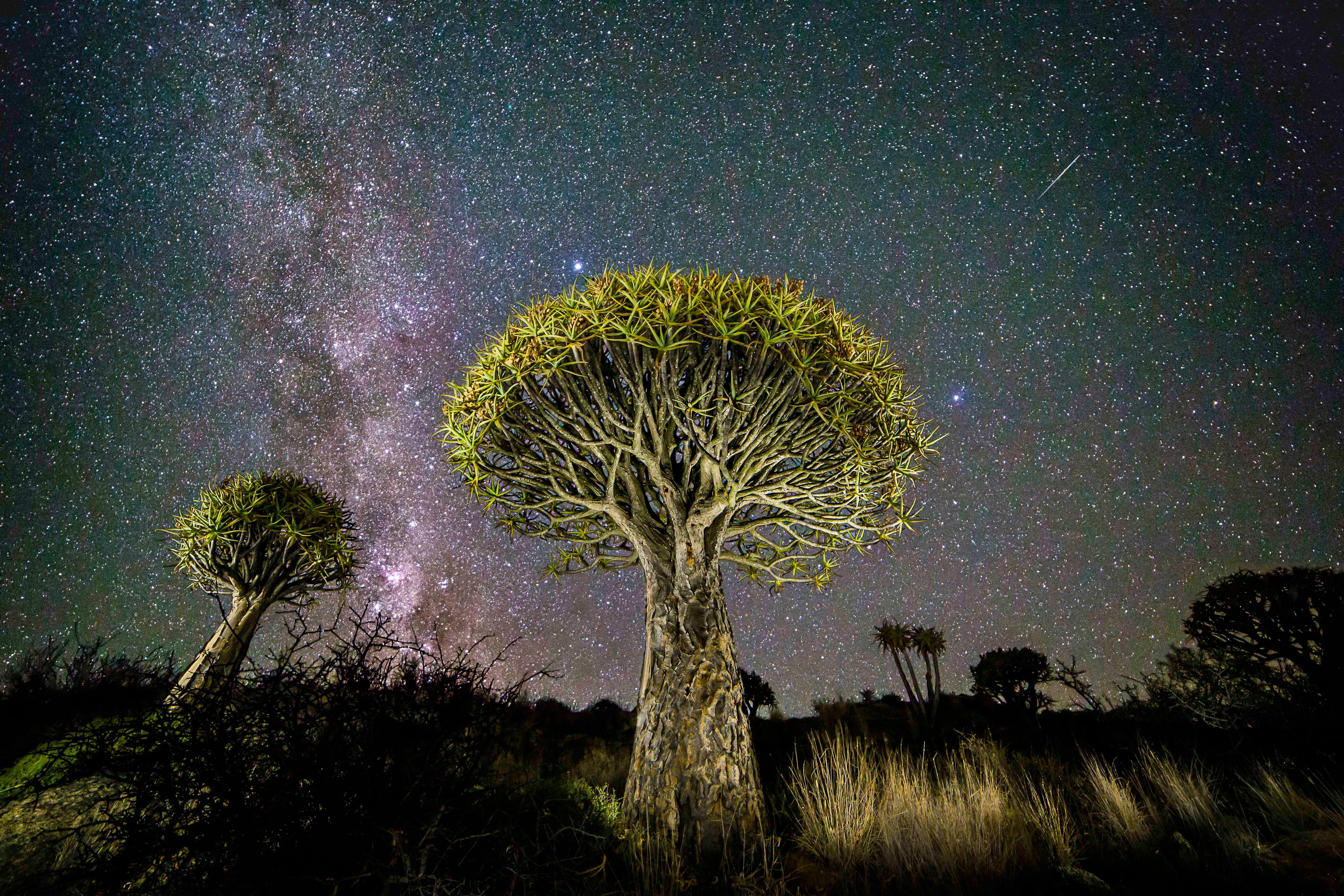 In Pictures: Astronomy Photographer of the Year 2015 releases sneak peek at entries