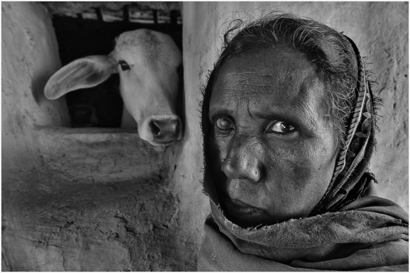 Eyes by Gourab Guha India