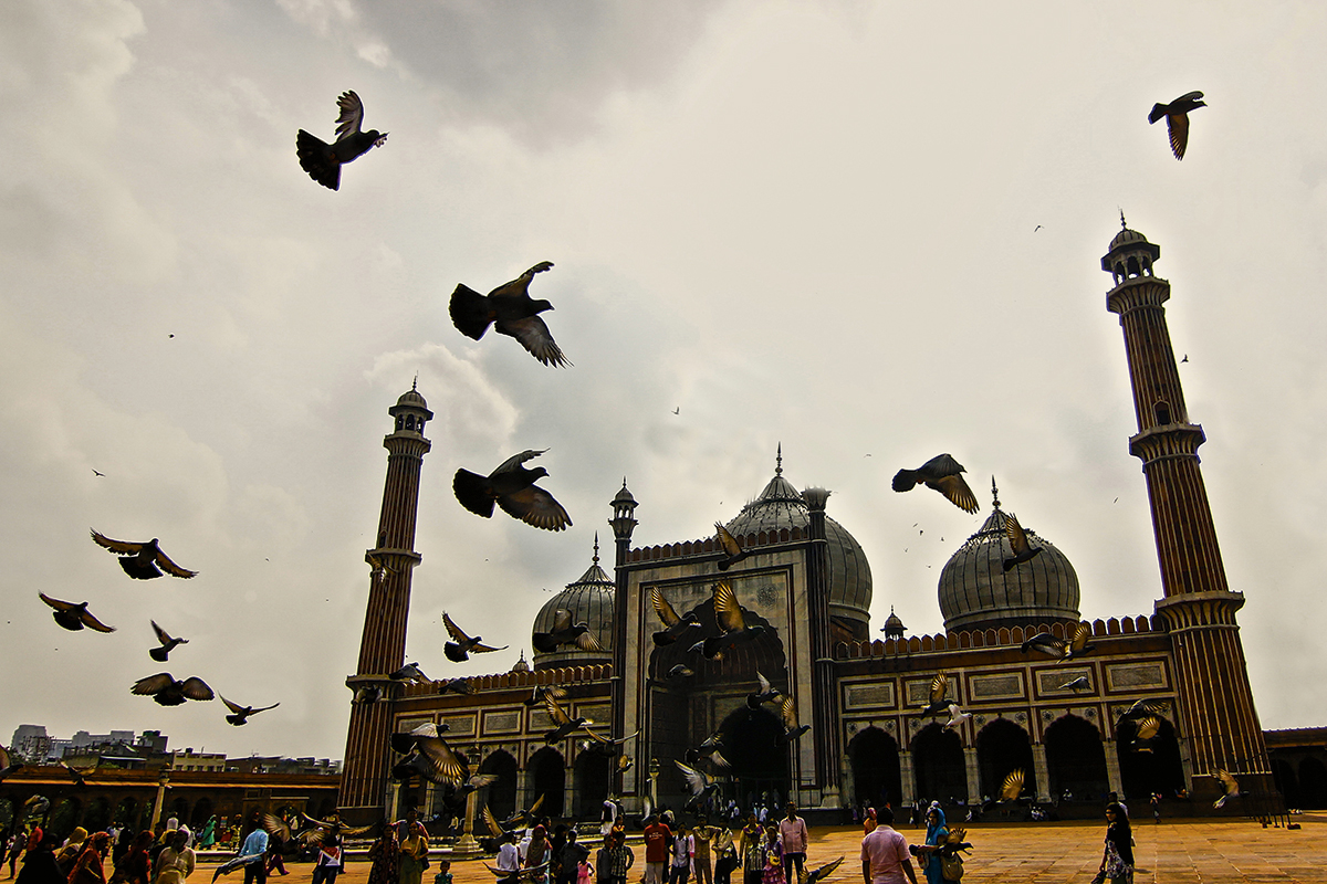 Photo Appraisal: Mosque and pigeons
