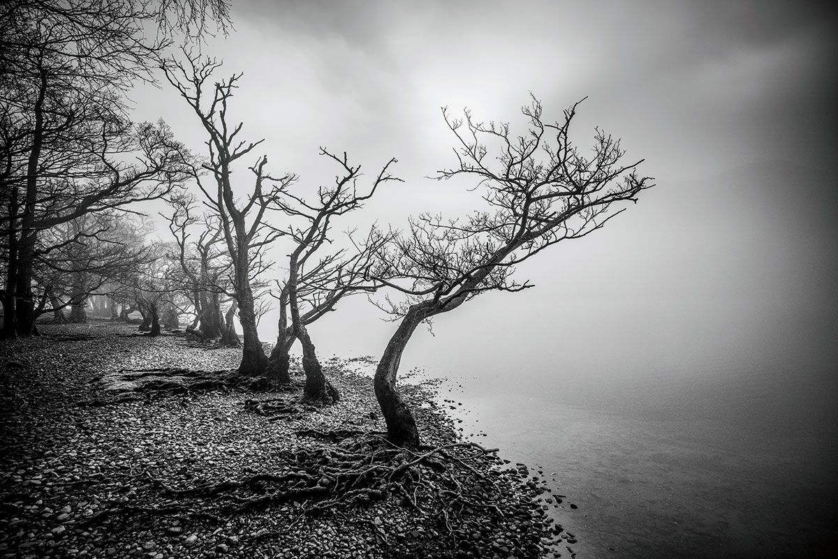 Composition tips: 5 steps to better photographs