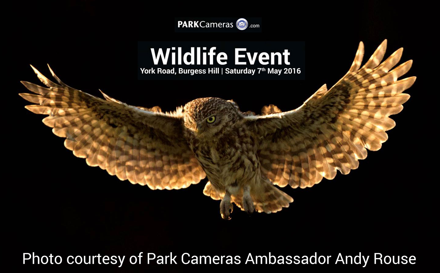 Park Cameras to celebrate wildlife photography on 7 May