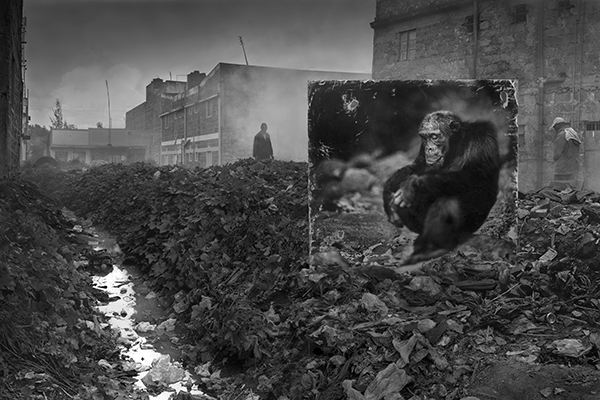 Inherit the Dust: Nick Brandt interview