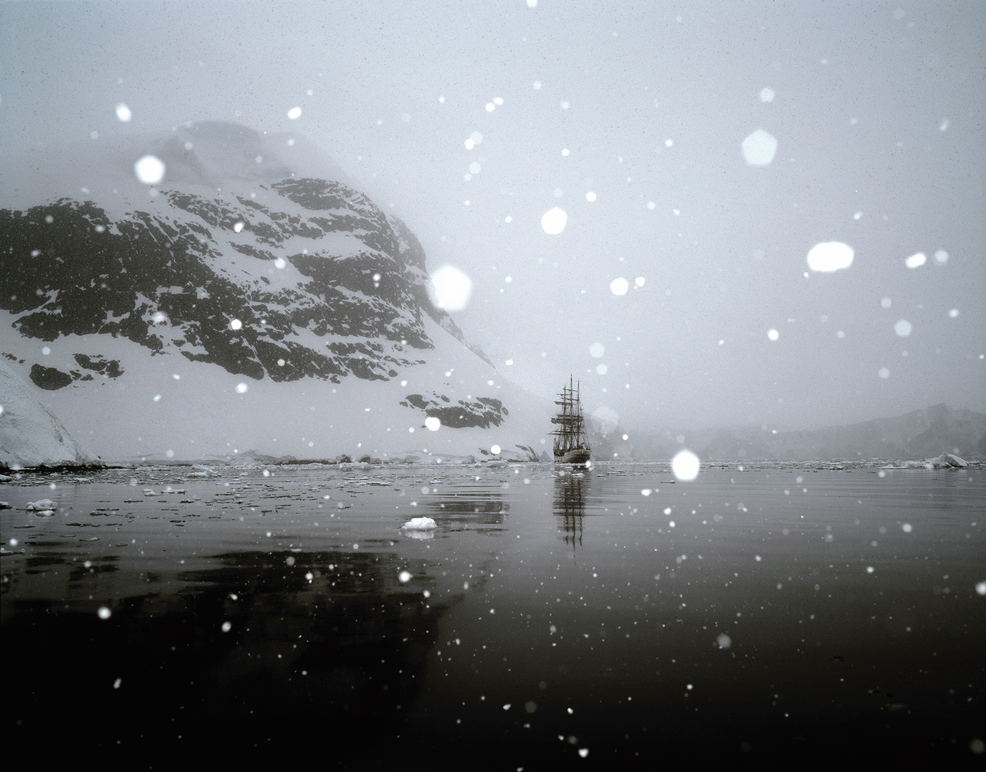 Love in a cold climate: Photographing Antarctica with René Koster