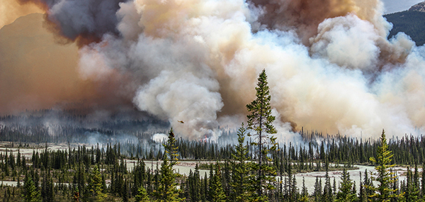 In the line of fire: Environmental Photographer of the Year winner interview