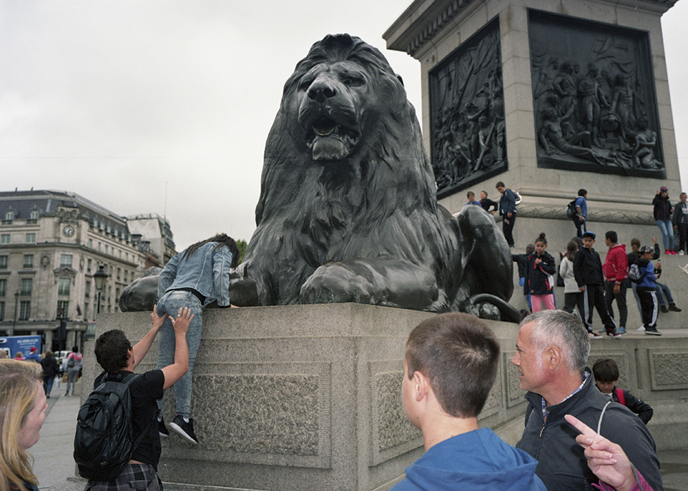 marc fairhurst lion in trafalgar square