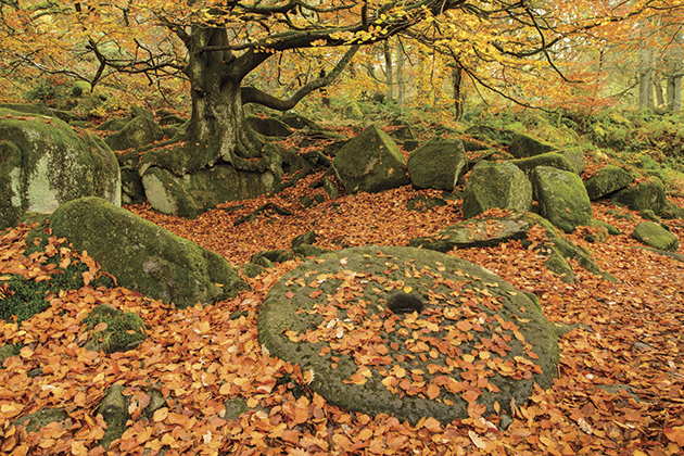 Photo location guide: Padley Gorge