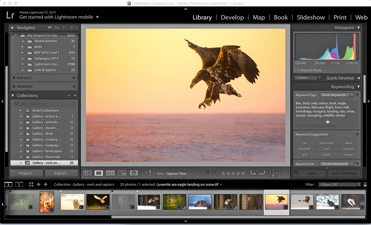 18 Lightroom shortcuts to speed up your editing