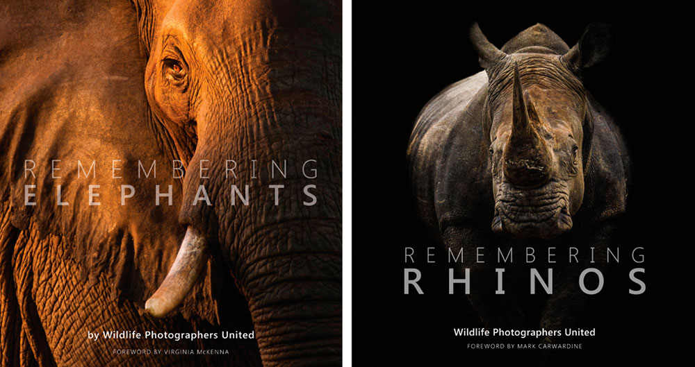 Remembering elephants and remembering rhinos-books