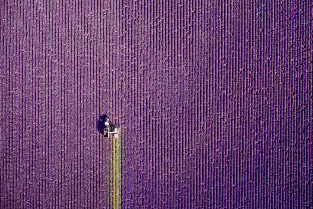 Winners of the International Drone Photography competition 2017 announced