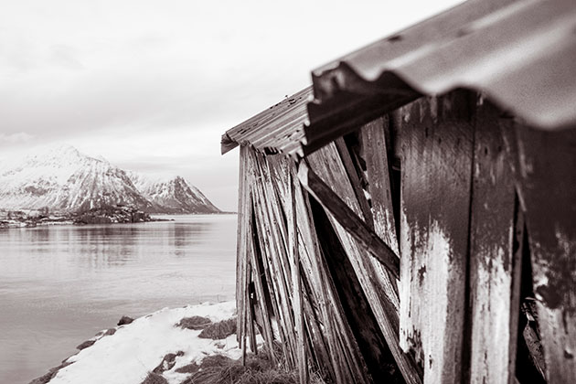 Tips for toning black and white photos