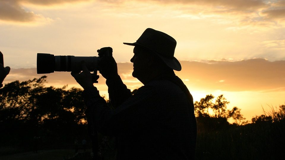 8 affordable telephoto lenses for wildlife photography