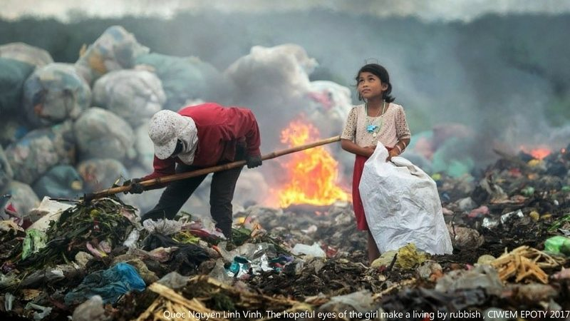 Environmental Photographer of the Year 2017