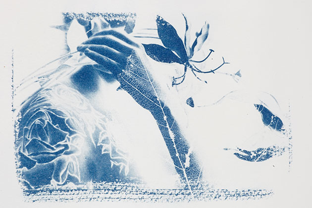 How to make cyanotypes: top tips
