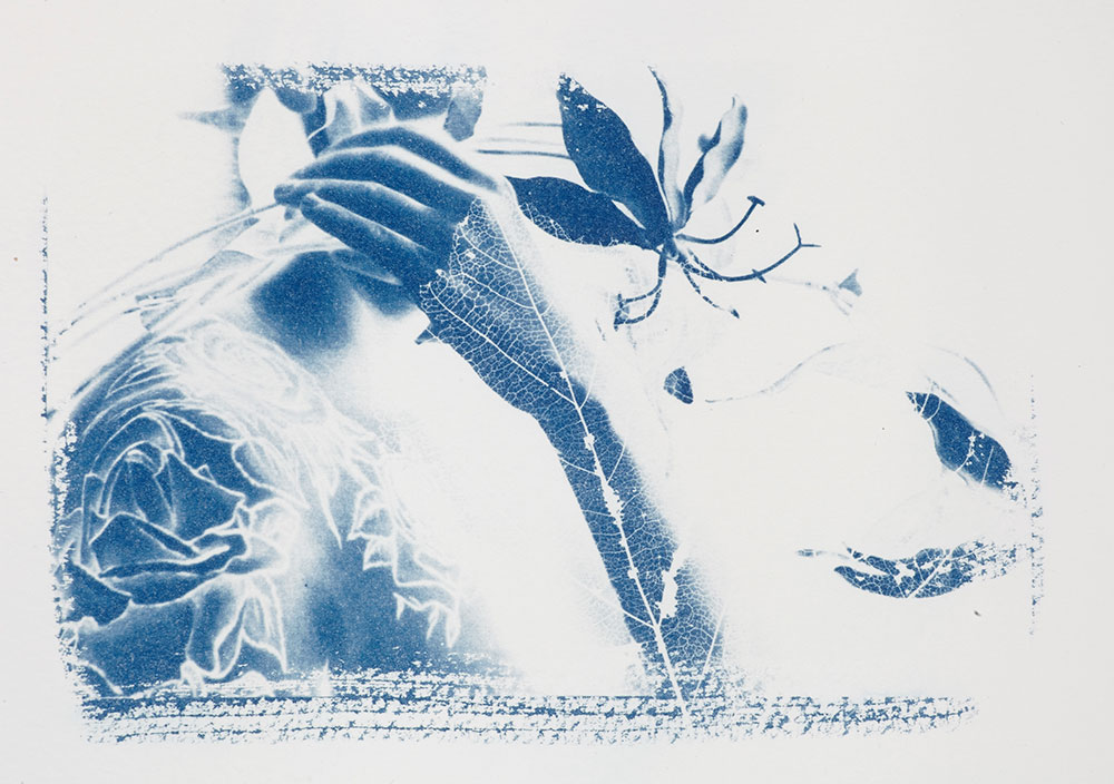 Cyanotypes using digital negative