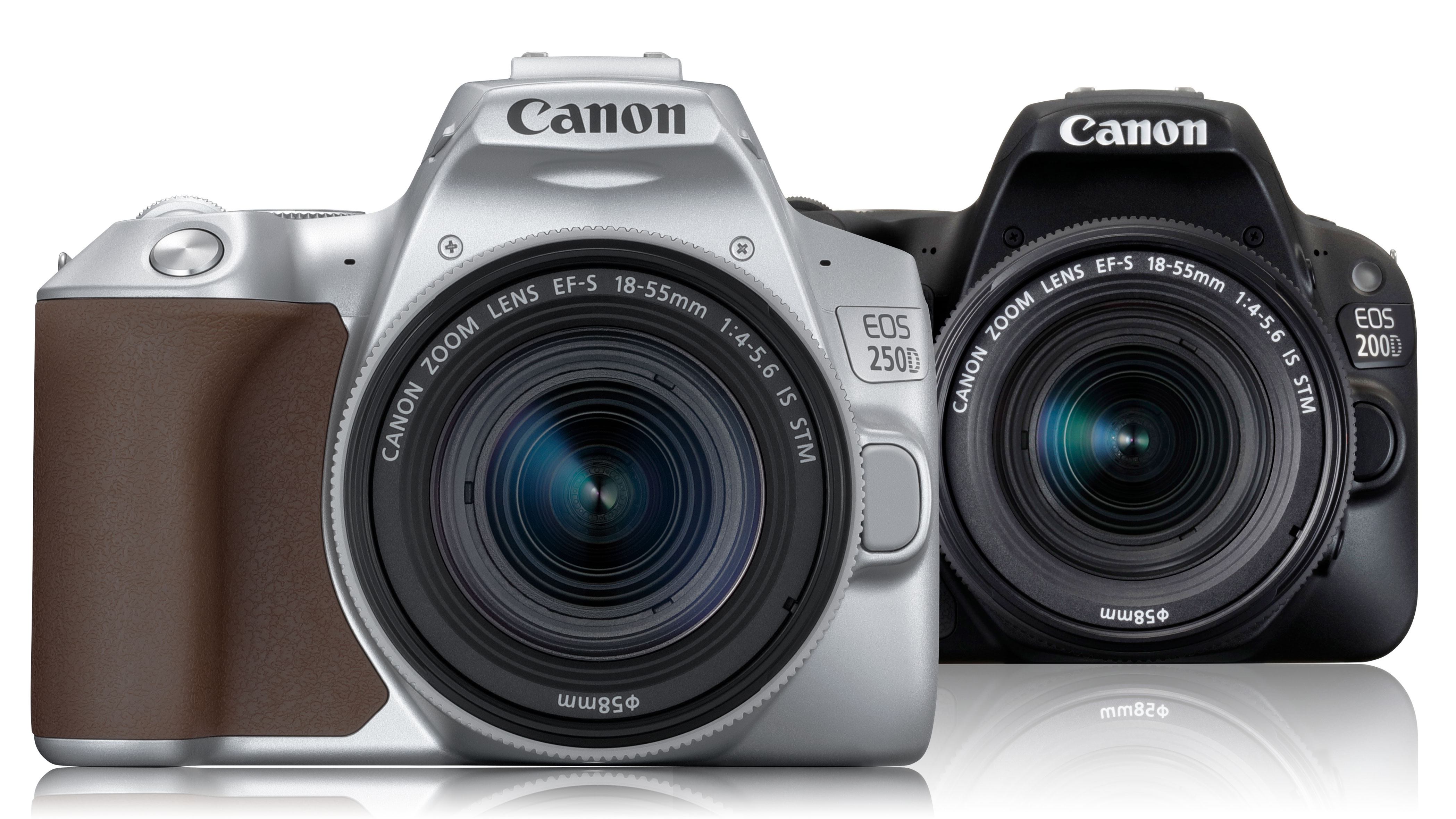 Canon EOS 250D SLR has 4k and more for around £500