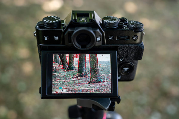 When Can You Call Yourself A Photographer Amateur Photographer