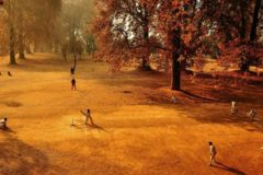 Cricket photography competition opens for entries
