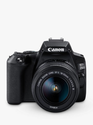 Best cameras 2019 canon eos 250d