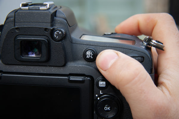 back button focus - how to take sharp photographs