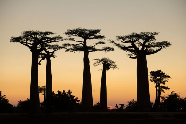 Madagascar - photography destinations