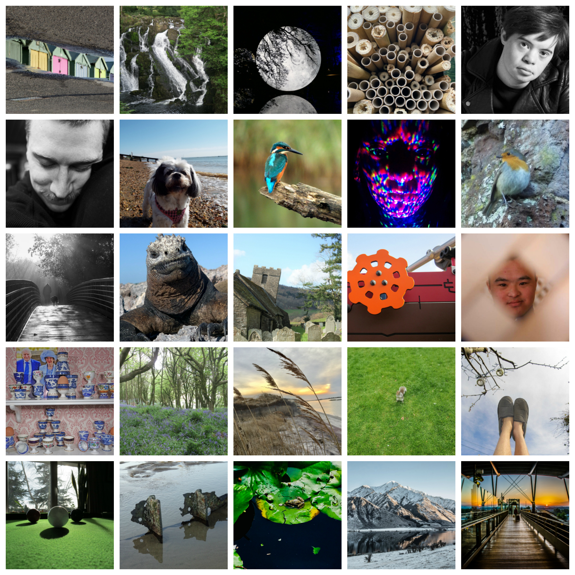 Great entries in global contest for photographers with Down's Syndrome - Amateur Photographer