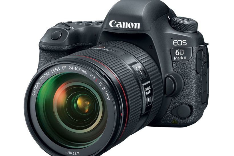 What are the best value DSLRs