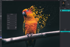 Best Photo Editing Software – Subscription-free!