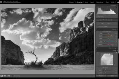 Creating stunning black and white photos with ease