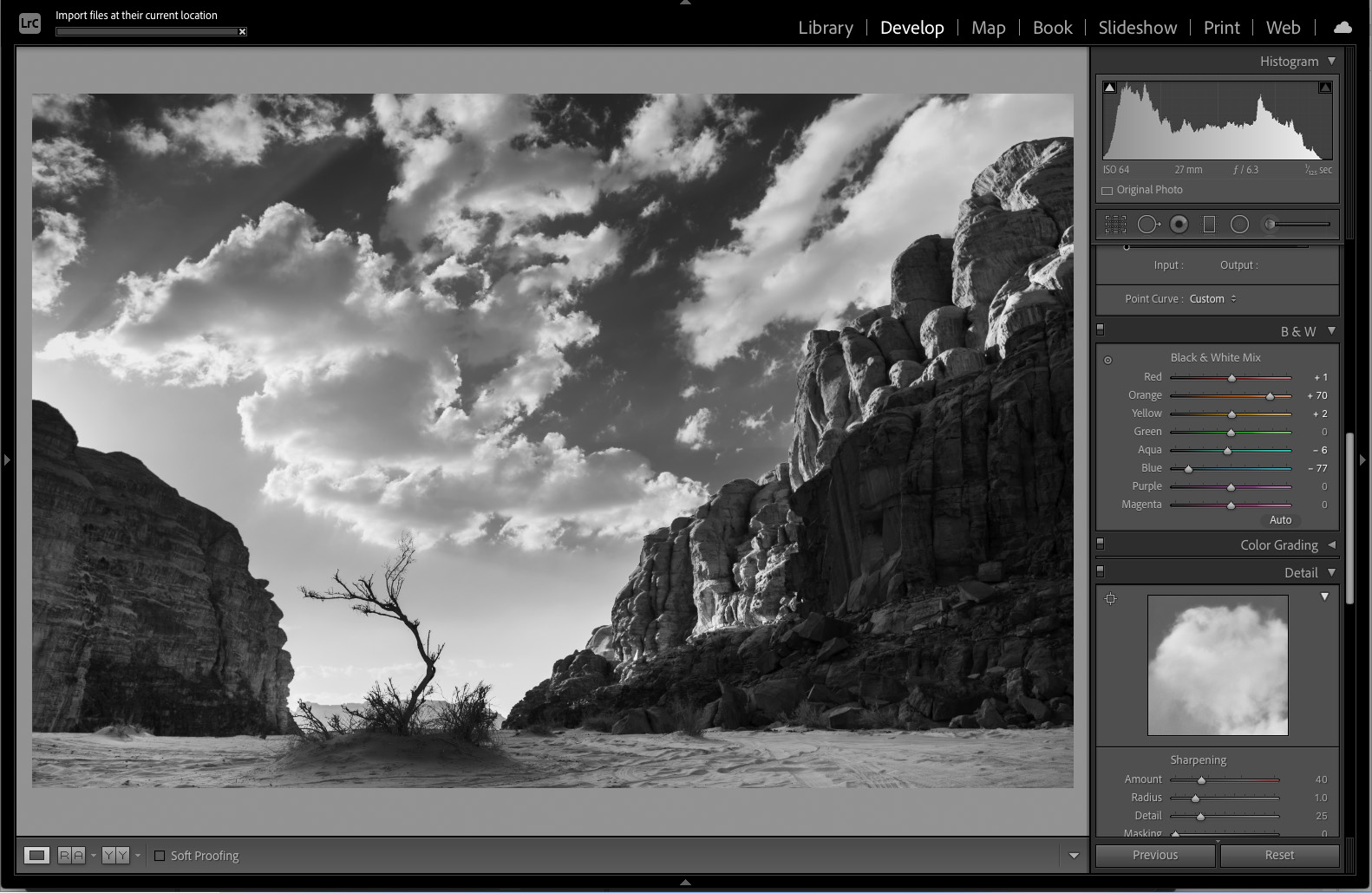 Creating stunning black and white photos with ease - Amateur Photographer
