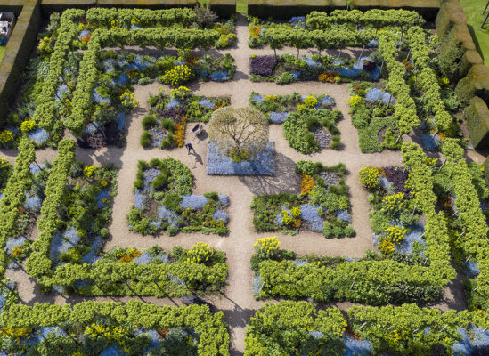 Blooming great: RHS garden photo winners announced, this year's contest now open 2