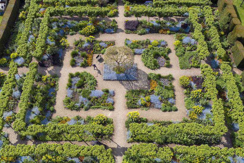 Blooming great: RHS garden photo winners announced, this year's contest now open