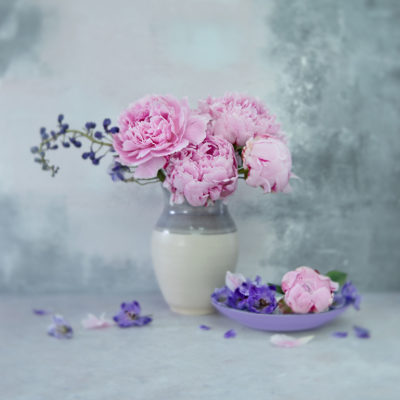 How to take better flower photographs 10