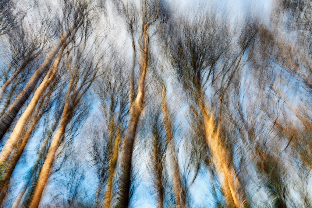 How to capture movement creatively in photography 27