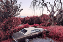 Get great-looking infrared photos on your phone