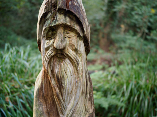 Olympus 25mm F1.2 Sample photo, Wooden face, 1/50s, f/1.2, ISO200, E-M1 II